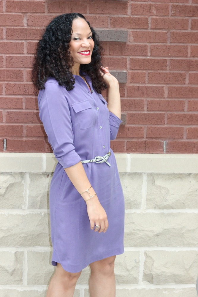 Silk Shirt Dresses 6
